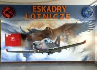 Eskady Lotnicze